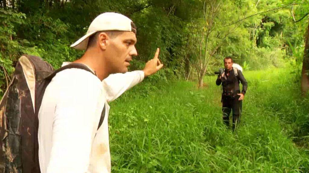 Frank se va de safari