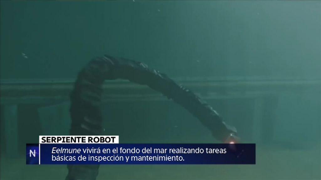 Serpiente robot, la momia Ötzi o la Cámara de Ámbar… noticias de la semana