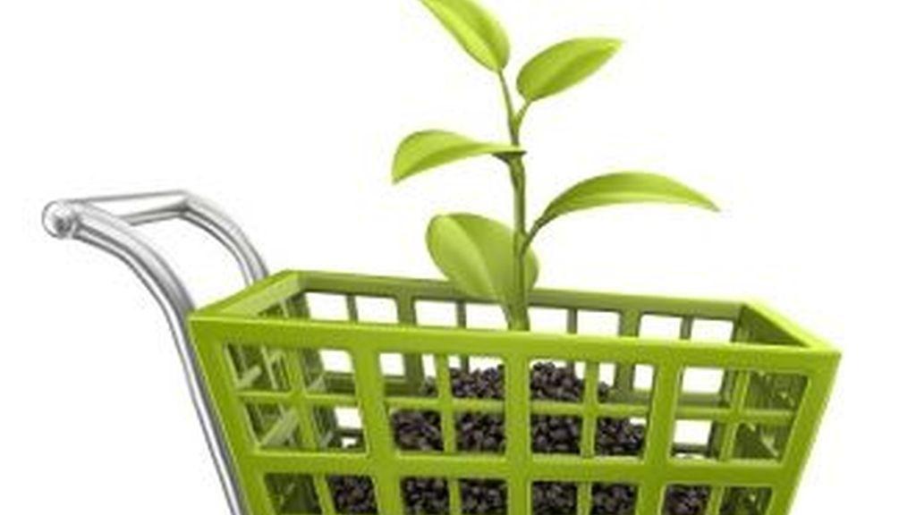 Los españoles y los portugues los menos dispuestos a gastar en productos ecológicos. Foto qualityoflifenews.com