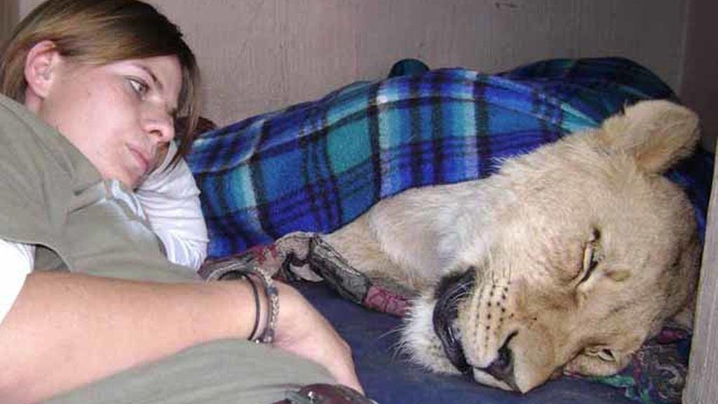 Mamá de una leona