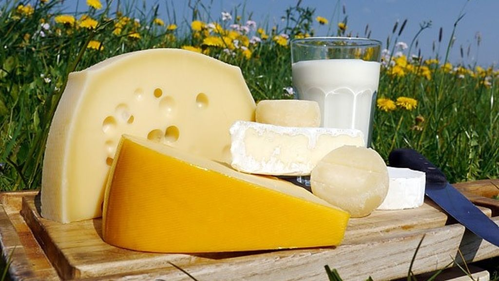Quesos, queso, leche, para un cerebro sano