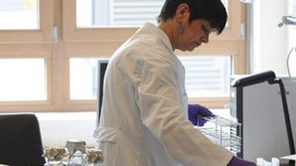 un total de 37 personas han fallecido en Alemania por el brote de E.coli. Foto: EFE.