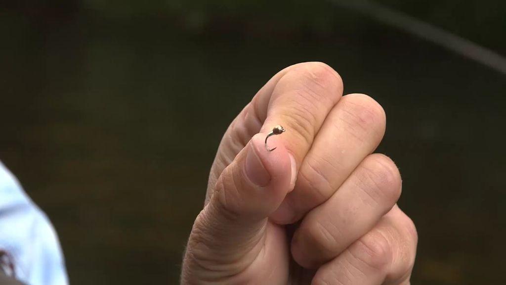 Calleja se clava un anzuelo en el dedo para demostrar que no se hace daño a las truchas