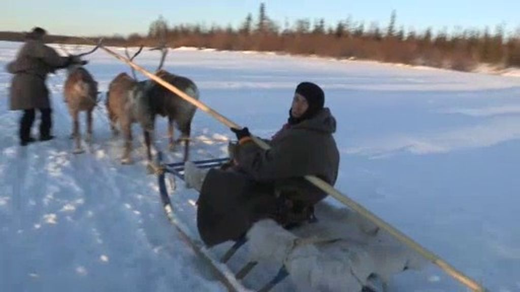 Calleja entrena para la carrera de renos