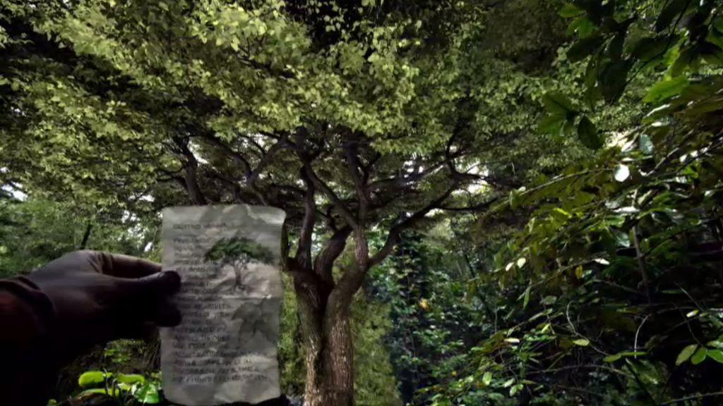 AJ encuentra 'el árbol del sentido'