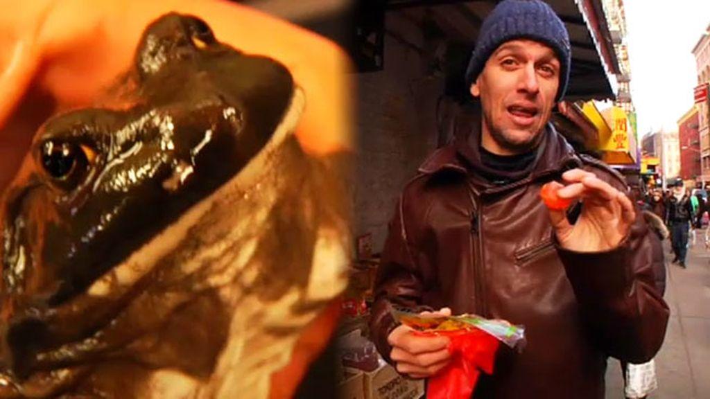 Yema seca de huevo de pato y pescado deshidratado en Chinatown