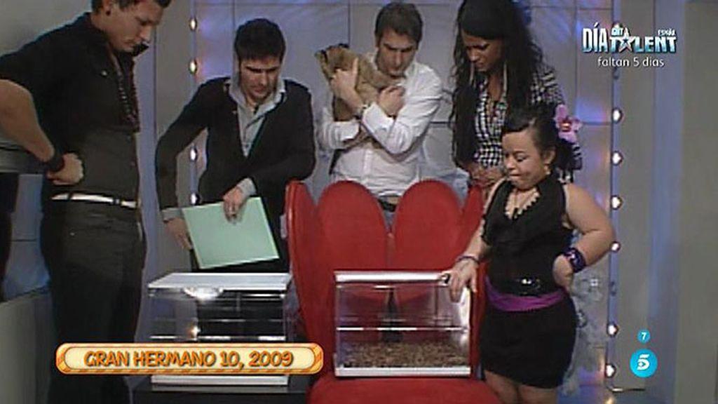 Kiko Hernández muestra un vídeo de Liz en 'GH 10' con gusanos y cucarachas