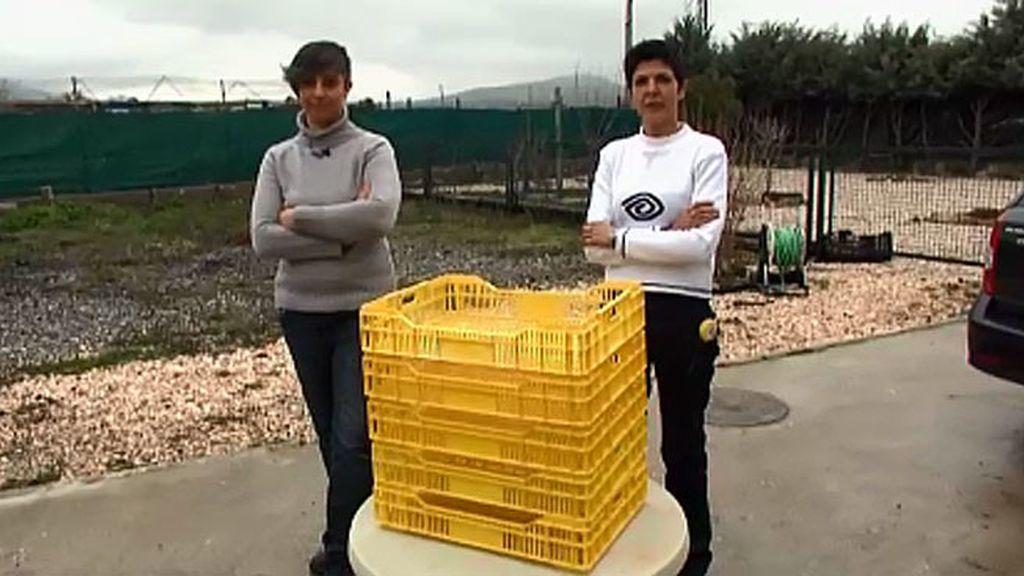 Vendo: cinco cajas de plástico apilables