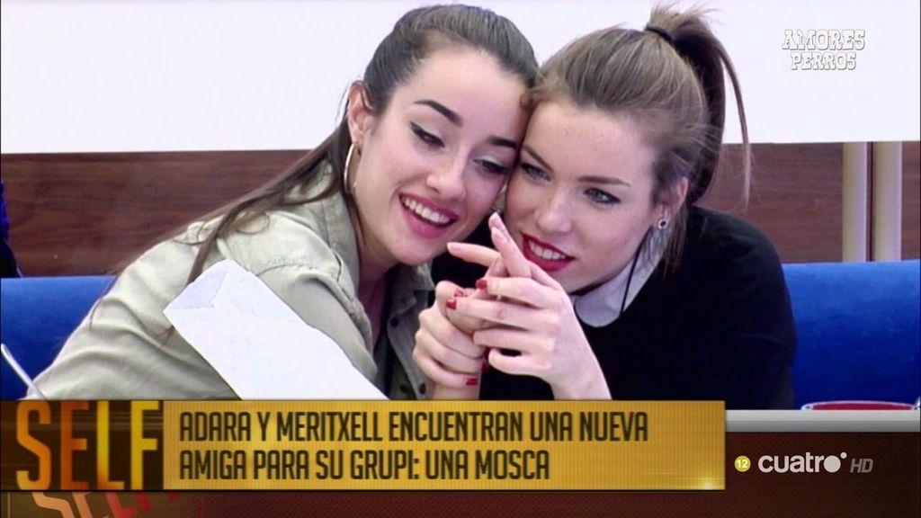 Adara y Meritxell tienen una nueva amiga en la casa de GH, ¡la mosca de la tele!