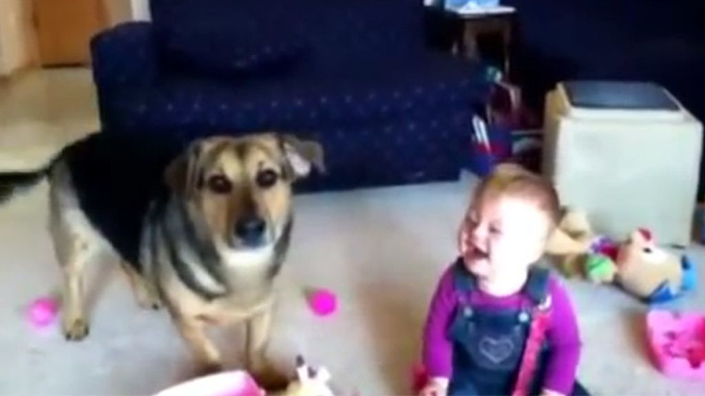 La risa de un bebé al ver a su perro jugando