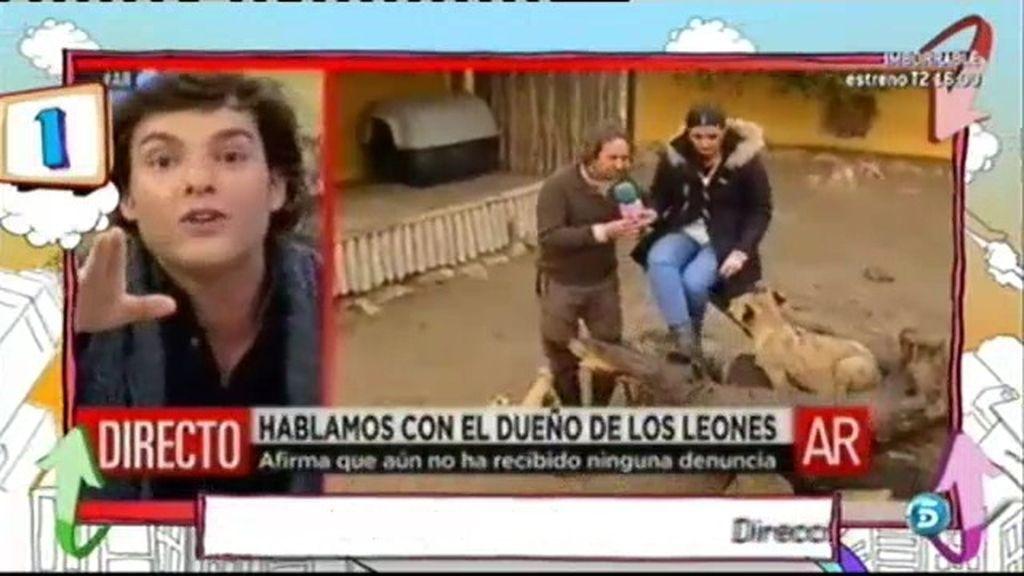 El ranking: Los cachorritos de Kiko Rivera