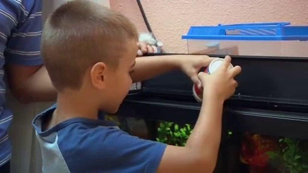 Daniel y Cristian aprenden a ayudar en casa y a hacer actividades juntos