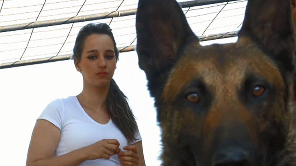 Sabina se ve reflejada en un perro muy agresivo y empieza a comprender a su familia