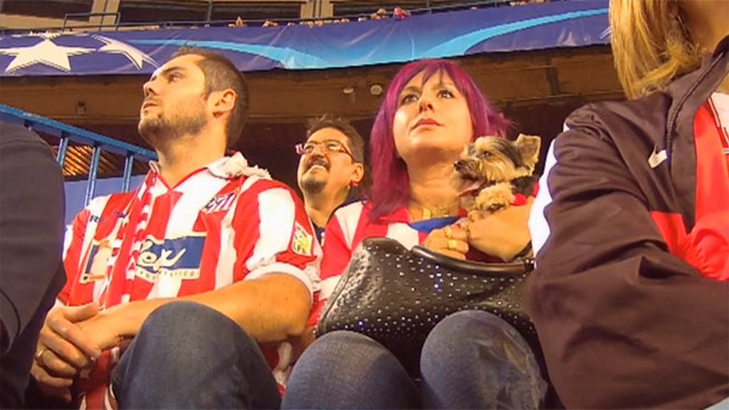 Koko, el perro colchonero que no se pierde un partido del Atlético de Madrid