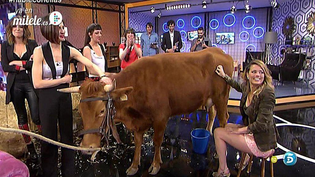 Presentar un programa con tacones de aguja y ordeñar una vaca, es posible