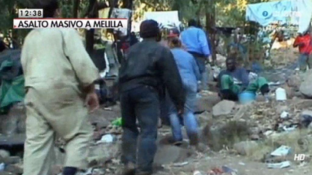 Exclusiva: Los inmigrantes, en campamentos improvisados en el monte Gurugú