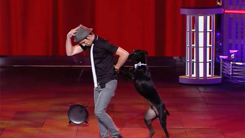 El atípico tango de Alberto y su perro Rocky se lleva la máxima puntuación