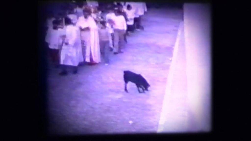 """""""El Moro"""", el Perro de los Entierros que olía la muerte en Fernán Nuñez"""