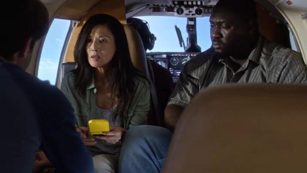 Una banda de murciélagos agresivos ataca a la avioneta en la que viaja Jackson