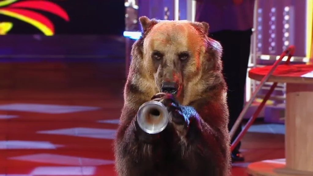 Pavel y el oso que toca la trompeta, baila el 'hula hoop y posar para hacerse un selfie
