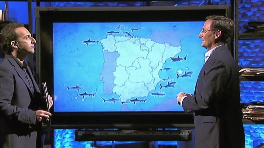 """F. González, sobre los tiburones: """"todos los bañistas hemos estado 'fichados' por ellos"""""""