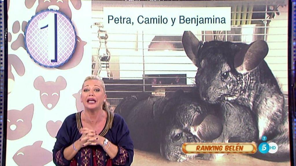 Belén Esteban presenta su ranking de las mascotas de 'Sálvame'