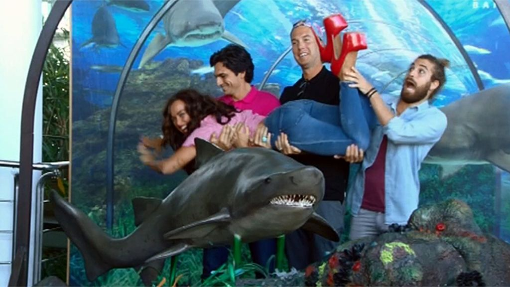 """Fidel, del acuario: """"Ha sido una experiencia top"""""""