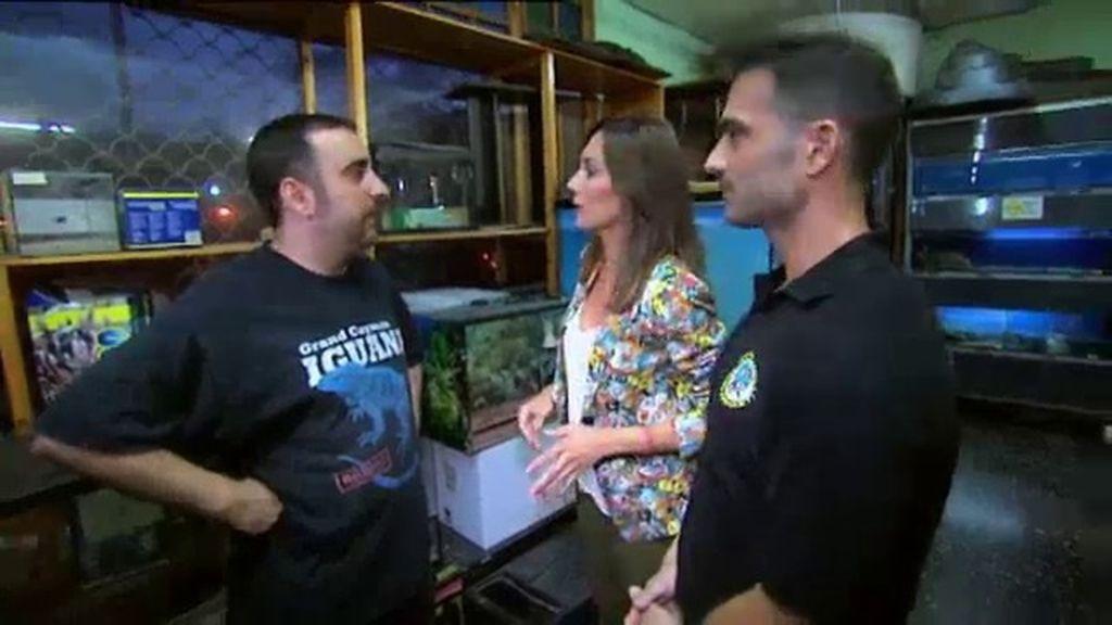 Dani y su equipo reciben la visita del dueño de una exitosa tienda de animales