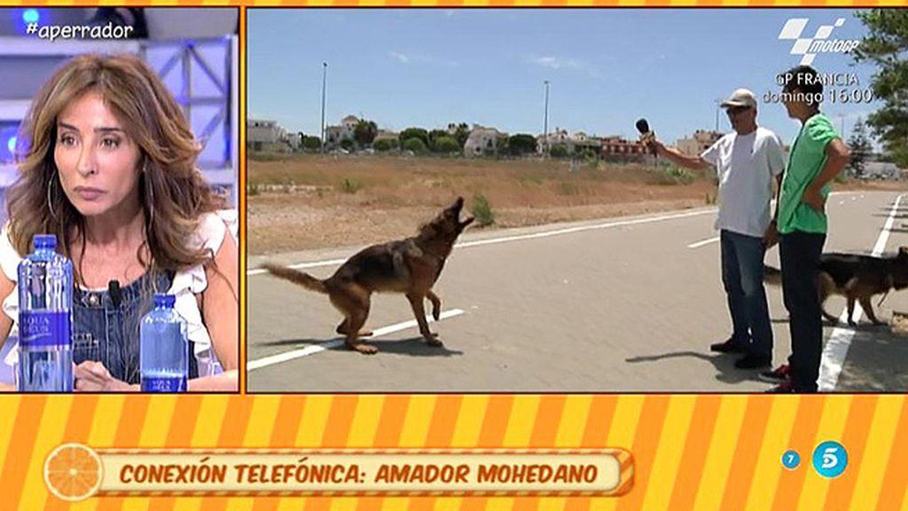 """Amador Mohedano: """"Mi perro es inocente"""""""