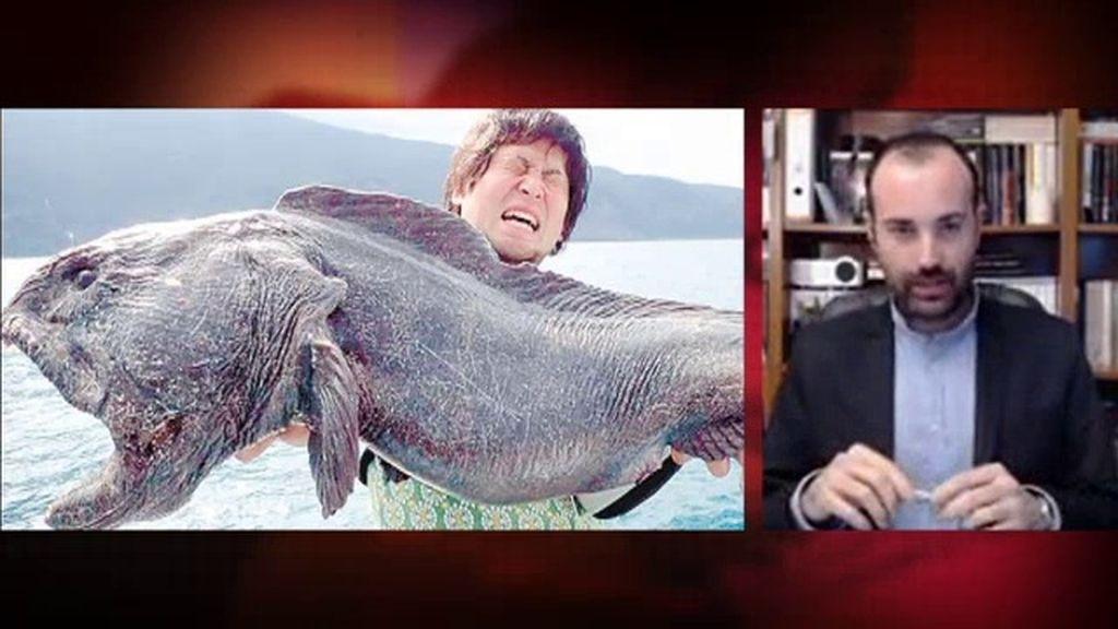 Misterio 4.0: ¿Es real la imagen del pez mutante de Fukushima?