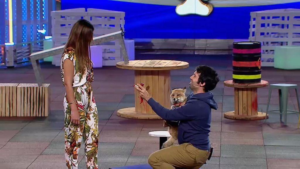 Pedro, el dueño de la zorra Margarita, le pide matrimonio a su novia en '¡Vaya Fauna!'