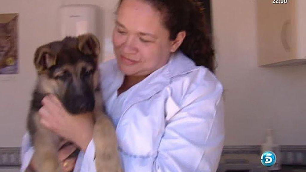 Teresa ha montado una clínica veterinaria ambulante