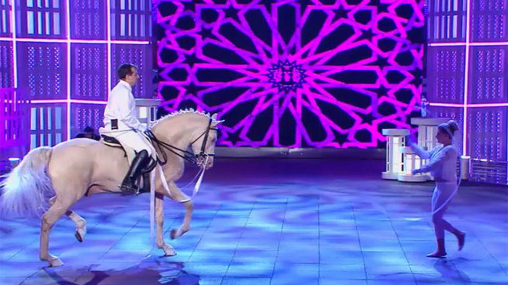 Casimiro, un caballo albino…y artista