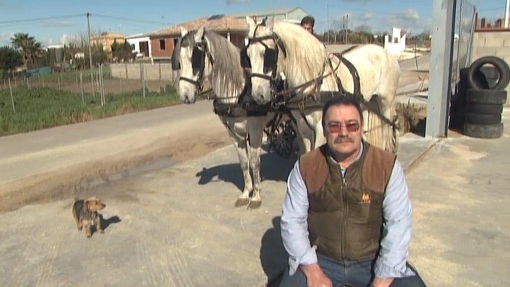 Consigue tu coche de caballos por sólo 3.500 euros