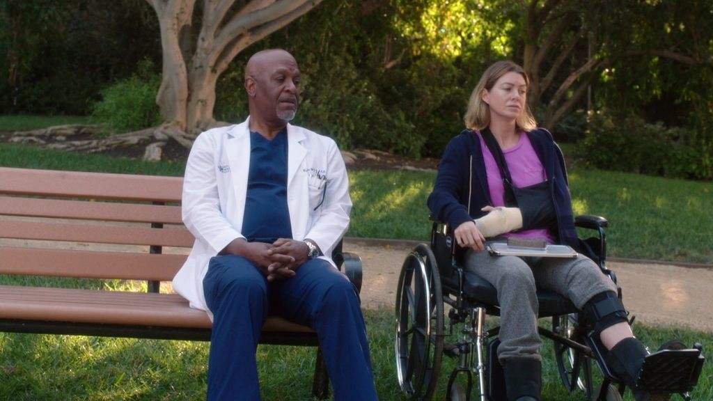 """Webber, a Meredith: """"Perdona a Amelia por no ser Derek, por ser la otra Shepherd"""""""