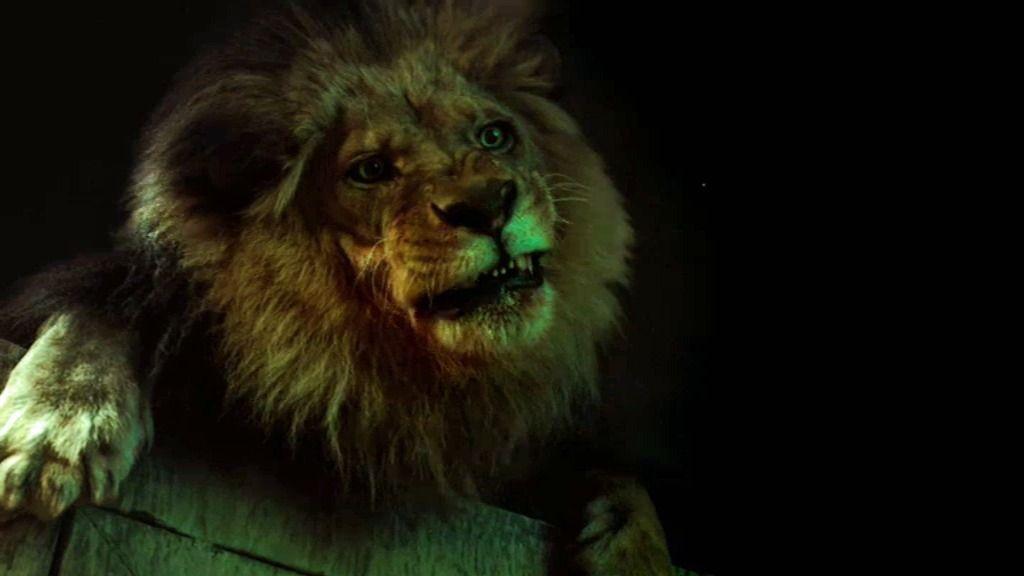 Un león mata a un vigilante nocturno en el zoológico de Los Ángeles
