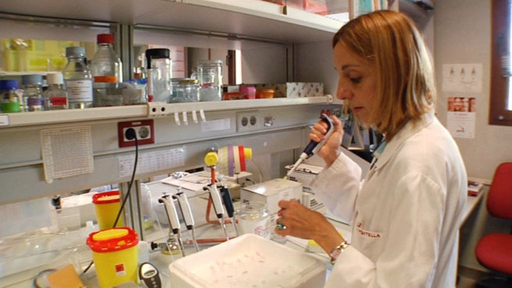 """Luisa, investigadora de HHT:""""No tenemos ministerio y creo que ahí está el problema"""""""