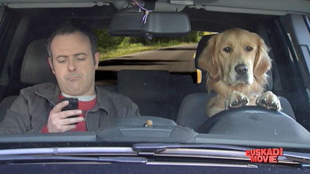 Perros lazarillo que facilitan la vida a los usuarios de smartphone