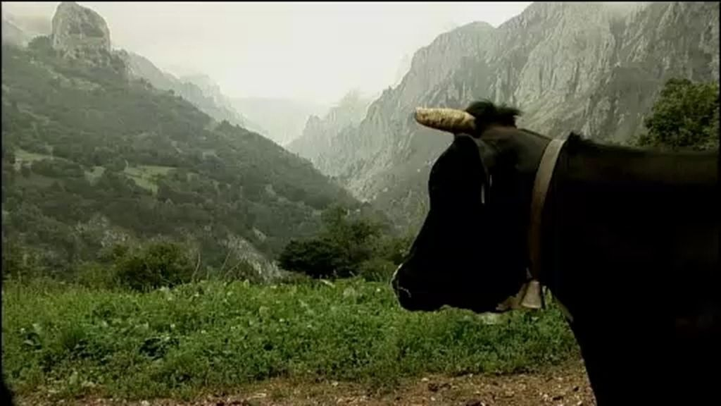 Cabrales, un tesoro de Asturias