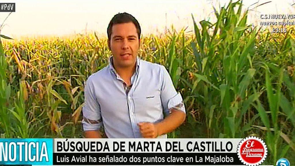 La zanja en la que podría estar Marta del Castillo está a 20 metros de la carretera