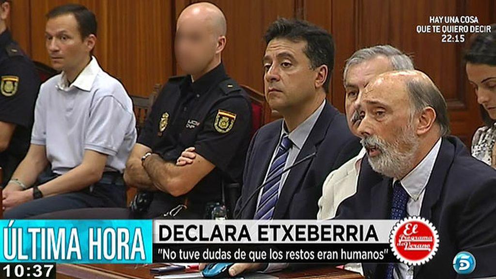 """Etxeberria: """"Las vértebras tienen morfología humana de un individuo no adulto"""""""