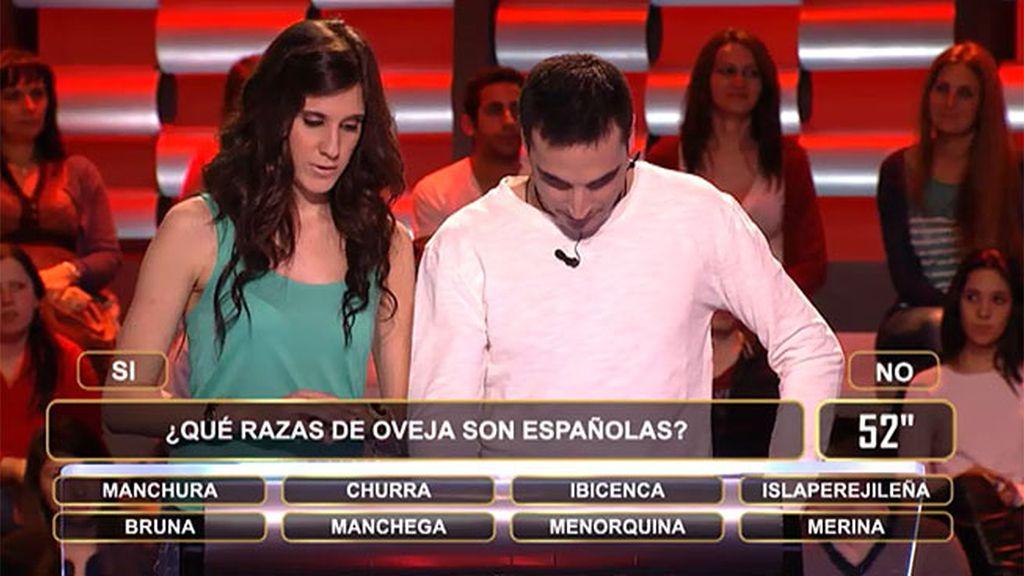 Rubén y Cynthia se pierden entre churras y merinas