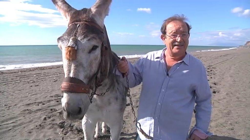 Fenicio, la única mascota viva del deporte español
