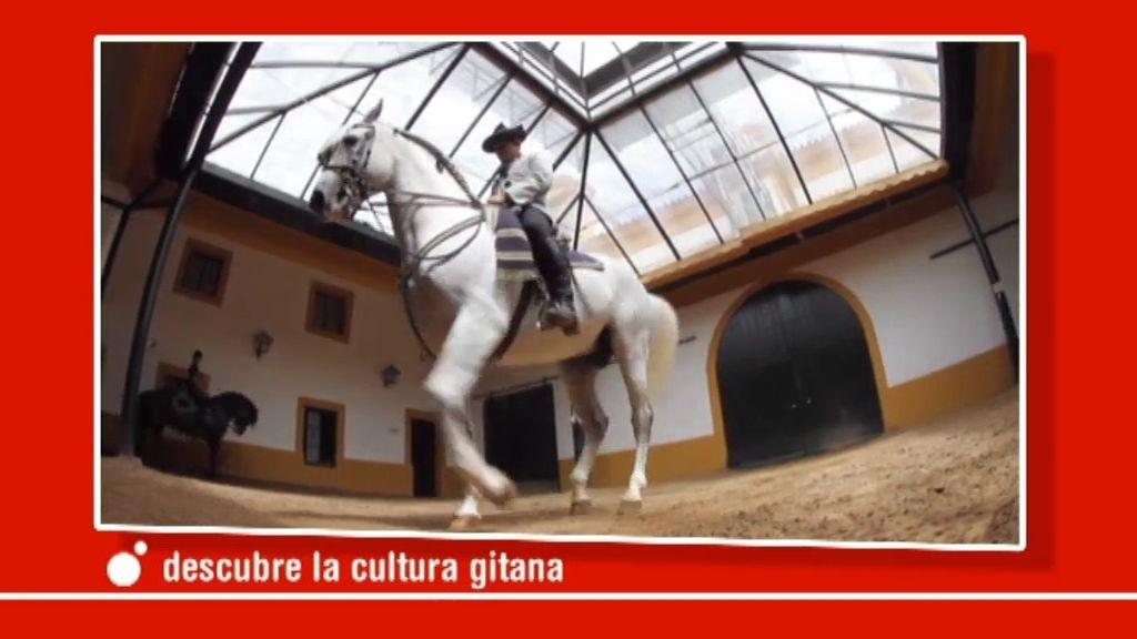 Baila con el 'duende' gitano en Cuatro este domingo a las 21.30