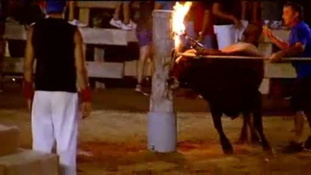 Toros entre fuego y polémica