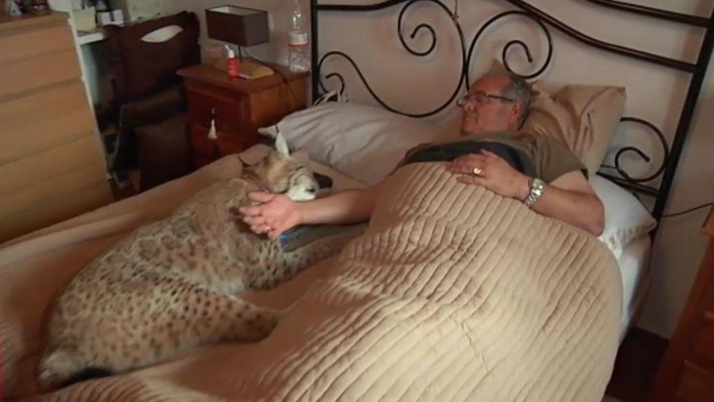 """""""Prefiero dormir con mi lince antes que con mi mujer"""""""