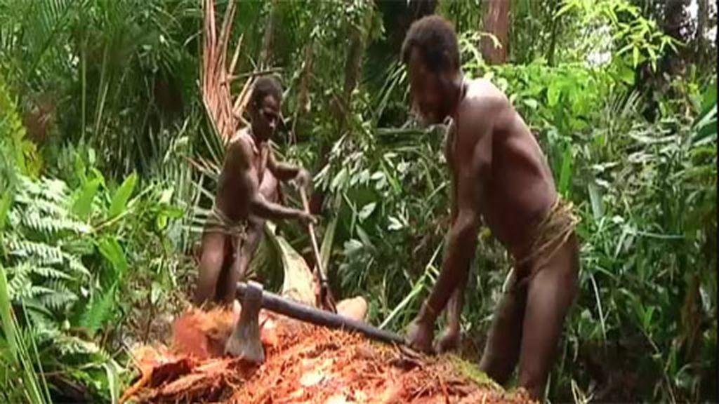La tribu Korowai: Los últimos caníbales