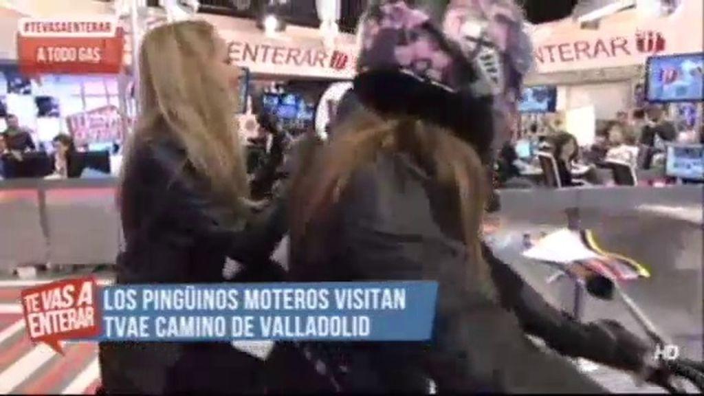 Los 'pingüinos' visitan 'TVAE' acompañados de Debora