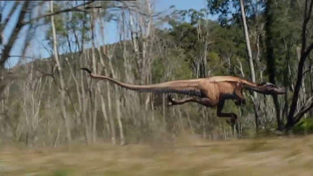 A la caza del nicoraptor