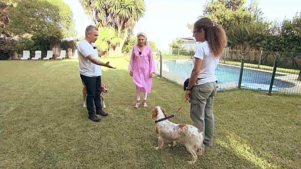 César conoce al perro de Beatriz de Orleans